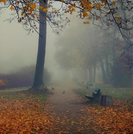 ДДТ Что такое осень